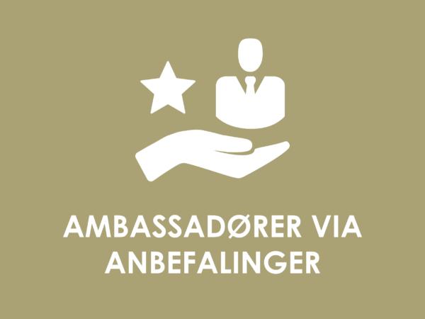 Fokuser på at skabe ambassadører via anbefalinger